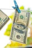 Dollaren hänger på klädstrecket royaltyfri foto