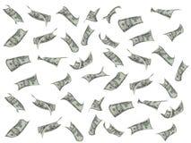 dollarflyg Arkivbild