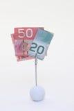 Dollari canadesi Fotografie Stock Libere da Diritti