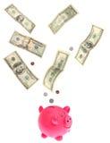 Dollari che cadono nella banca piggy Fotografia Stock