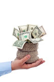 Dollari che traboccano da una borsa Fotografia Stock