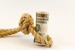 Dollari con la corda Fotografia Stock