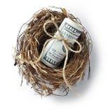 Dollari del nido dei soldi Fotografia Stock Libera da Diritti