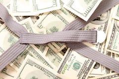 Dollari dentro un fondo della valigia Immagini Stock