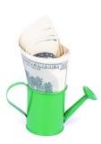 Dollari di crescita Fotografia Stock Libera da Diritti
