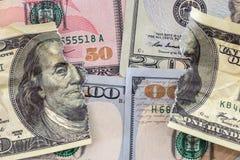 Dollari di fattura lacerata Fotografie Stock