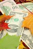 Dollari e fogli di autunno Fotografia Stock Libera da Diritti
