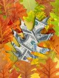 Dollari e fogli di autunno Fotografie Stock Libere da Diritti