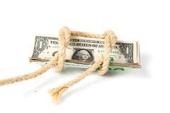 Dollari legati con una corda Fotografia Stock