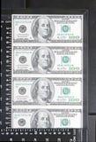 Dollari nel telaio Immagine Stock Libera da Diritti