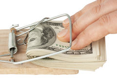 Dollari nella presa del mouse Immagini Stock Libere da Diritti