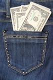 Dollari nella tasca Fotografia Stock Libera da Diritti