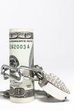 Dollari sotto la serratura Fotografia Stock