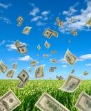 Dollari sul cielo e sulle erbe della priorità bassa. fotografia stock