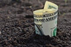 Dollarnota van de zwarte aarde stock afbeeldingen