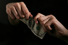 Dollaro immagine stock