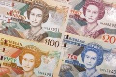 Dollaro caraibico orientale un fondo immagini stock