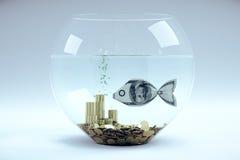Dollaro nella forma di pesce Fotografia Stock Libera da Diritti