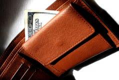 Dollaro in raccoglitore Fotografia Stock Libera da Diritti