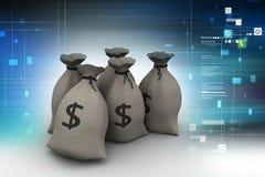 Dollaro tenuto in sacco Immagine Stock