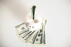 Dollarräkningar som in faller eller flyger ut ur en rosa spargris Royaltyfria Bilder
