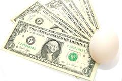 Dollarrechnungen mit weißem Ei, neue Geburt Lizenzfreies Stockfoto
