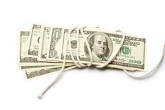 Dollars. Isolated on white background Royalty Free Stock Images