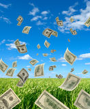 Dollars on background sky and herbs. The Falling cash on 100 dollars, on background sky and herbs Stock Photography