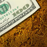 Dollars banknotes on golden nuggets close up Royalty Free Stock Photography