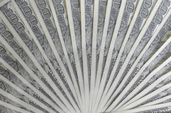 Dollars. Banknotes of one hundred dollars Royalty Free Stock Image