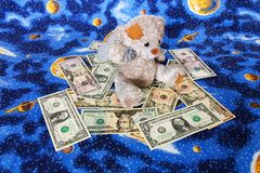 Dollars for bear Royalty Free Stock Photo