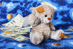 Dollars for bear Royalty Free Stock Photography