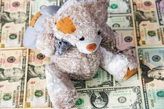 Dollars for bear Royalty Free Stock Images