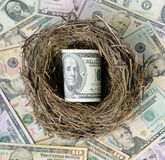 Dollars in a bird's nest. Royalty Free Stock Photography