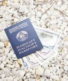 Dollars in blue passport on pebble pebble shingle Royalty Free Stock Image