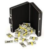 Dollars Case on white background Stock Images