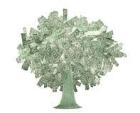 Dollars d'arbre illustration stock
