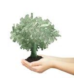 Dollars d'arbre illustration libre de droits