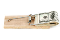 Dollars dans la trappe de souris Photographie stock