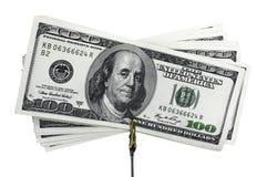 dollars de billets de banque Photographie stock libre de droits