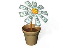 Dollars de fleur Image libre de droits