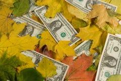 Dollars die met de herfstbladeren worden behandeld Royalty-vrije Stock Afbeeldingen