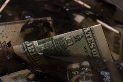 Dollars in een scrapyard Stock Foto