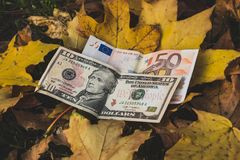 Dollars and the Euro fell, concept. Dollars and the Euro fell, the concept of the falling value of the dollar and Euro Royalty Free Stock Photography