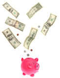 Dollars falling into piggy bank Stock Photography