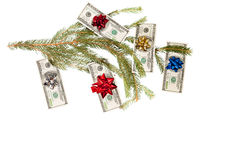 Dollars on fir tree Stock Photography