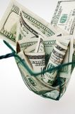 Dollars in fishing net Royalty Free Stock Image