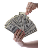 Dollars  are in  hands. Dollars notes are in womanish hands Stock Images
