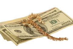 Dollars and  jeweller ornament Royalty Free Stock Photos