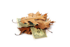Dollars and leaves. Old dollar banknotes which lay alternately with old leaves. An economic crisis Royalty Free Stock Images